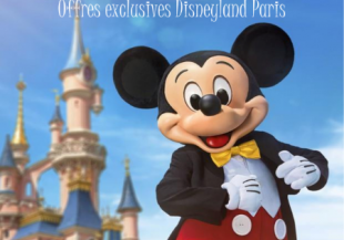 Offres Exclusives Disneyland Paris (COMPLET)